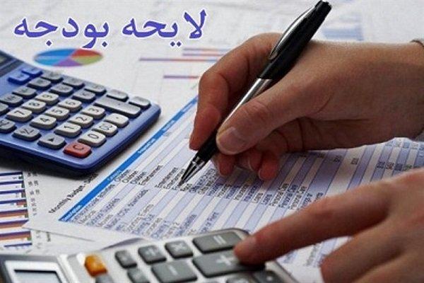 مجلس در بررسی بودجه دقت کند