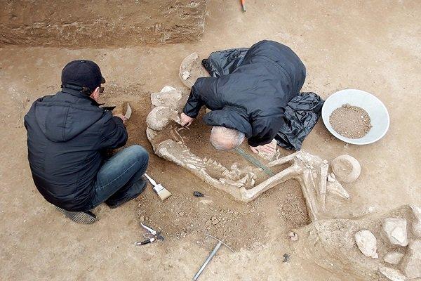 گور یک جنگاور سه هزار ساله در گیلان کشف شد