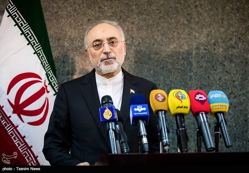 علیاکبر صالحی: طرف مقابل پیام را گرفت