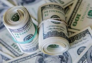 لزوم افزایش یارانه نقدی از محل منابع حاصل از تک نرخی شدن ارز