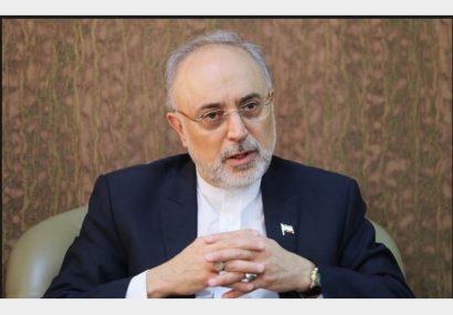 مدیرکل موقت آژانس بینالمللی انرژی اتمی با صالحی دیدار کرد