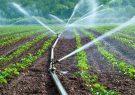 حل مشکل آبیاری با فناوری نانو
