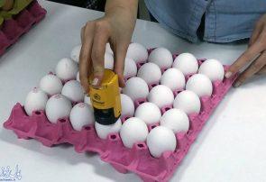 درج غیرواقعی تاریخ تولید روی تخممرغ