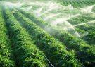 لزوم توجه مضاعف به کشت فراسرزمینی در راستای افزایش امنیت غذایی کشور