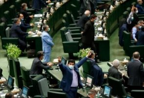 سعیدی: بدلیل تصویب طرح صیانت از حقوق کاربران در فضای مجازی از مردم ایران عذرخواهی میکنم