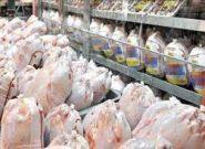 ورود شرکت پست به توزیع مرغ