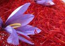 قیمت زعفران در بازار روز شنبه ۲۳ مرداد ۱۴۰۰