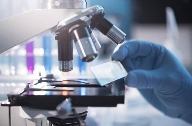 از تولید کیتهای تشخیص بیماری تا صادرات کیت کرونا